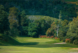 Junko Golf Club