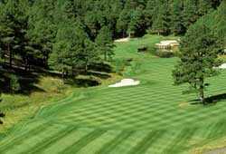Forest Highlands Golf Club (Arizona)