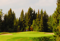 Ruuhikoski Golf