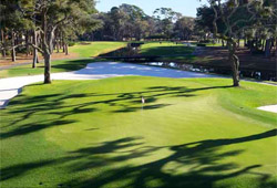 The Sea Pines Resort - Harbour Town Golf Links (South Carolina)