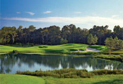 The Club at Carlton Woods - Tom Fazio Championship Course