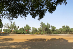 Ain Nakhl Golf Club