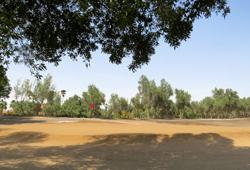 Ain Nakhl Golf Club
