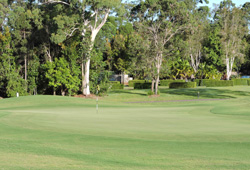 Peregian Springs Golf Club