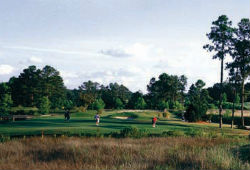 The Bridges Golf Club at Hollywood Casino Gulf Coast