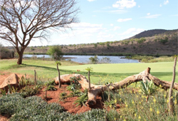 Kambaku Komatipoort Golf Club (South Africa)