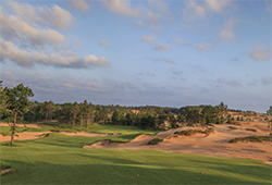 Mammoth Dunes - Sand Valley
