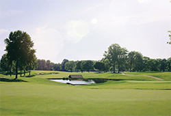Canterbury Golf Club Beechwood