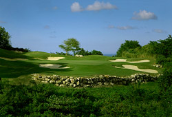 White Witch Golf Course (Jamaica)