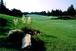 Anyang Country Club course