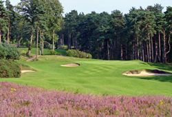 St George's Hill Golf Club - Red & Blue course